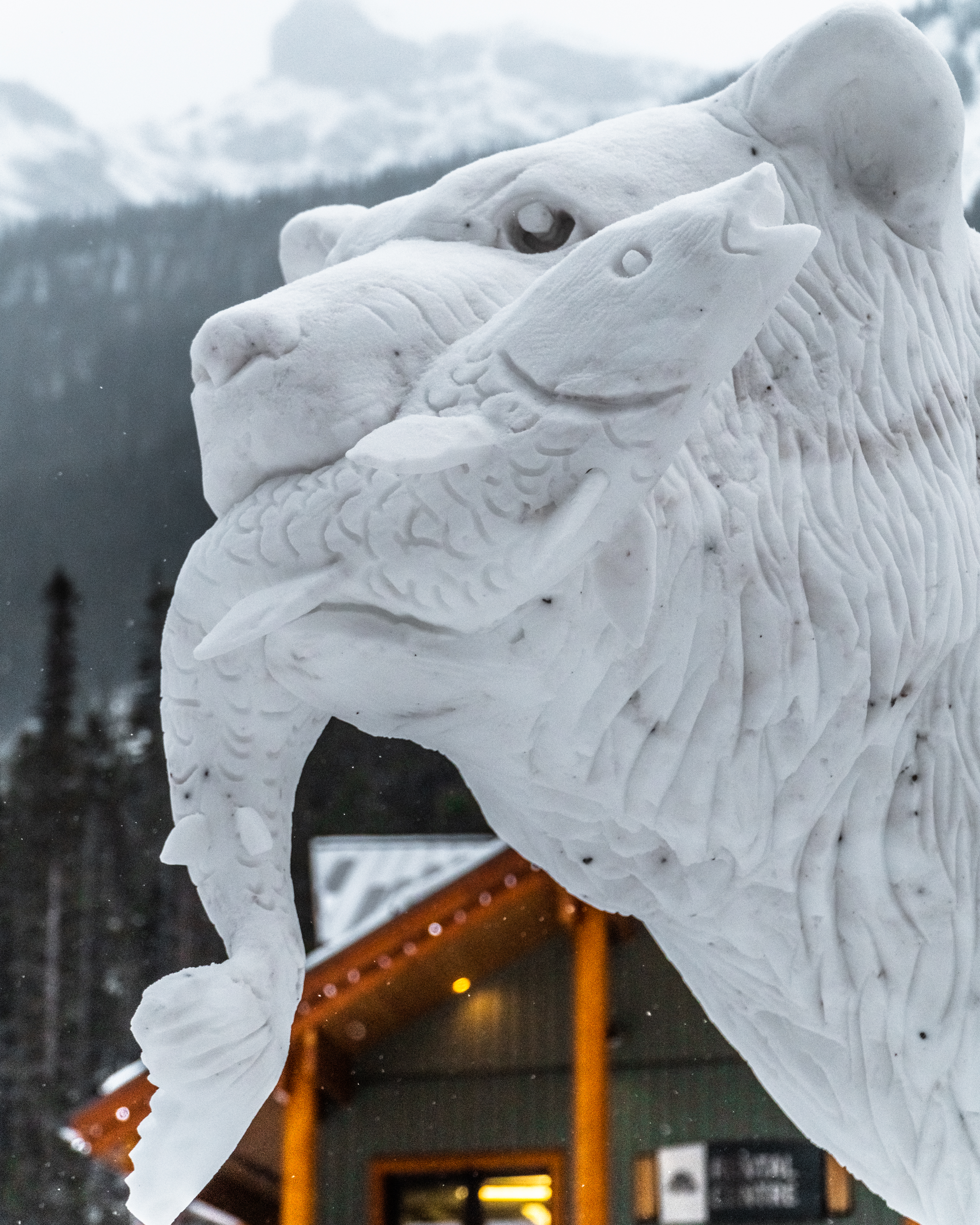 The Festival of Snow Continues at Sunshine Village Hero thumbnail