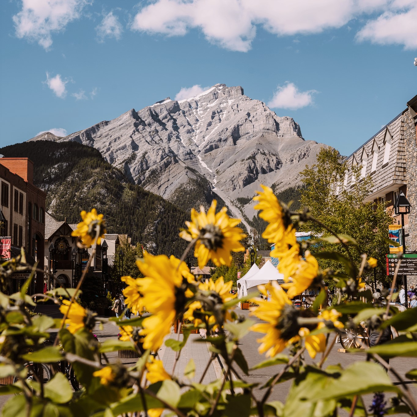 6 Things to Do in Banff This Summer. Hero thumbnail